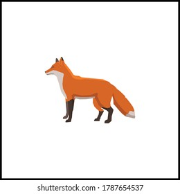 fox flat animal vector illustration