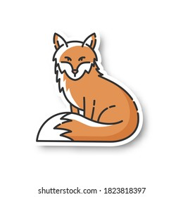 Fox patch. Cute animal with furry tail, common mammal, omnivore woodland creature. Forest wildlife, zoology RGB color printable sticker. Adorable fox vector isolated illustration