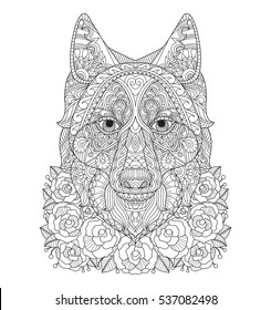 Fox in the rose garden. Zentangle stylized cartoon isolated on white background.  Hand drawn sketch illustration for adult coloring book, T-shirt emblem, logo or tattoo, zentangle design elements.
