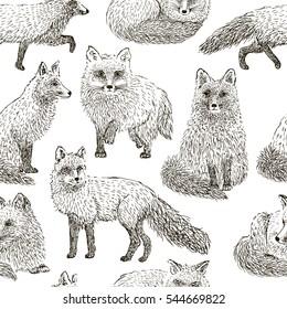 Fox seamless pattern sketch. Hand drawn vector illustration.