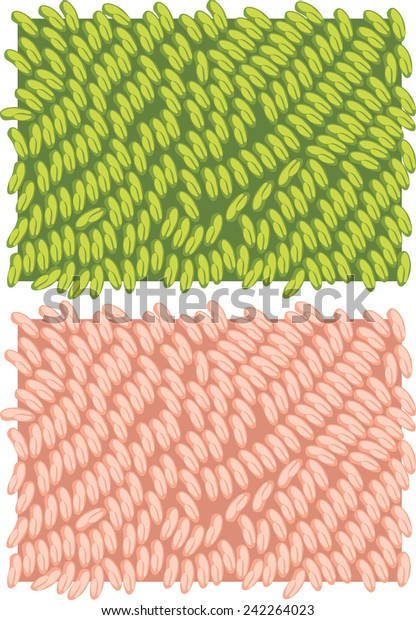 fragment-carpet-texture-vector-600w-2422