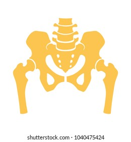 Fragment of the structure of the human skeleton. Pelvic girdle and thighs. Silhouette. Sign. Vector.