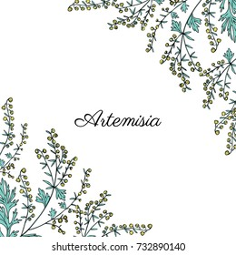 Frame with Artemisia vulgaris, border common wormwood hand drawn vector illustration isolated on white, Also called absinthium, absinthe wormwood, sagebrush herb, mugwort plants for design cosmetic