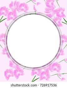 Frame made from Phalaenopsis orchids