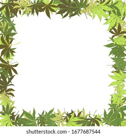 Frame with marijuana hemp leaves isolated on white. Hand drawn cannabis leaves. Marijuana Legalization. Template for packaging materials, banner, web design. Vector
