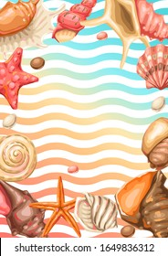 Frame with seashells. Tropical underwater mollusk shells decorative illustration.