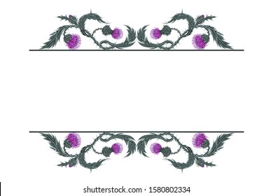 Frame for text with linear horizontal pattern of Scottish flower thistle on white. Hand drawn composition of Milk Thistle. Vector botanical illustration.