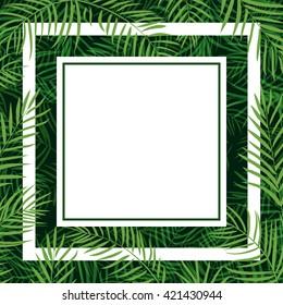 frame tropical palm leaf 10eps