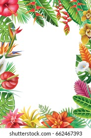 Frame from tropical plants and flowers