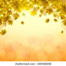 Frame of yellow and orange leaves of maple. Sunny autumn or summer day. Awakening of nature. Cover or background for an article. Copy space.