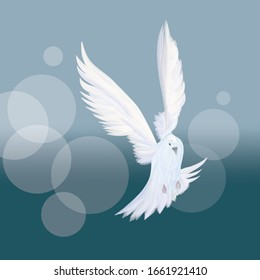 A free flying white dove. Beautiful abstract vector illustration
