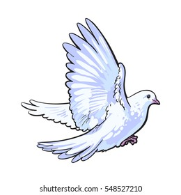 free flying white dove sketch style vector illustration isolated on white background realistic hand