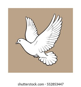 Free flying white dove, sketch style vector illustration isolated on brown background. Realistic hand drawing of white dove, pigeon flapping wings, symbol of love, romance and innocence, marriage icon