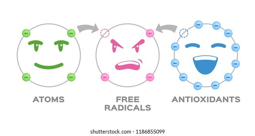 free radical and Antioxidant vector . Antioxidant donates electron to Free radical . infographic cartoon