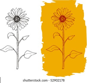 Freehand drawing of a sunflower in two versions, vector