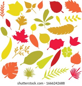 Freehand leaves and fern red and orange color illustrations. Tropical foliage and exotic palm doodles. Autumn maple leaf fall design element. Nature greenery plants sketch. Pretty olive branch set.
