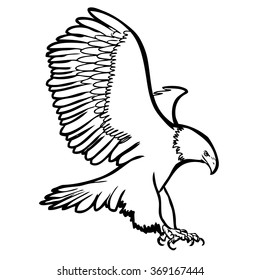 freehand sketch illustration of eagle, hawk bird doodle hand drawn