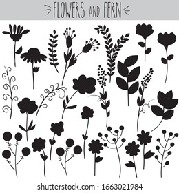 Freehand summer ferns and flowers vector doodles. Pretty roses and violet sketch. Laurels branches and leafs drawing. Daisy and sunflowers collection. Spring botanical plants.