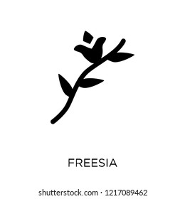 Freesia icon. Freesia symbol design from Nature collection. Simple element vector illustration on white background.