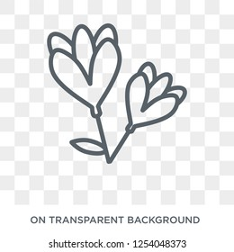 Freesia icon. Trendy flat vector Freesia icon on transparent background from nature collection. High quality filled Freesia symbol use for web and mobile