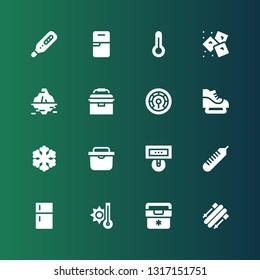 freeze icon set. Collection of 16 filled freeze icons included Skii, Fridge, Temperature, Thermometer, Freezer, Ice skate, Portable fridge, Iceberg, Ice