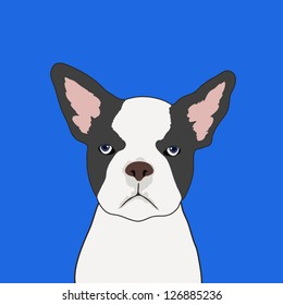 French bulldog, The buddy dog