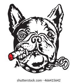 French bulldog with a cigar. Vector illustration