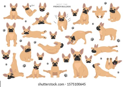French bulldog clipart. Dog healthy silhouette and yoga poses set.  Vector illustration