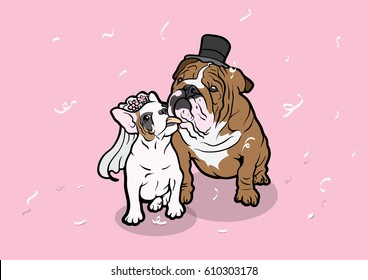 French Bulldog & Bulldog Couple