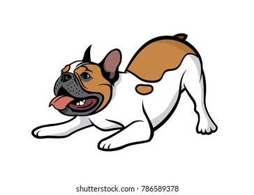 French bulldog fawn pied - isolated vector illustration