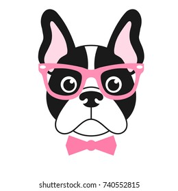 french bulldog girl with pink glasses
