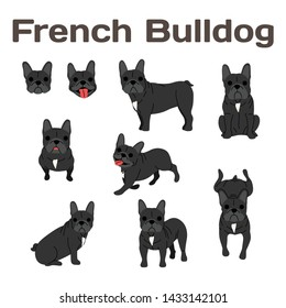 French bulldog illustration,dog poses,dog breed