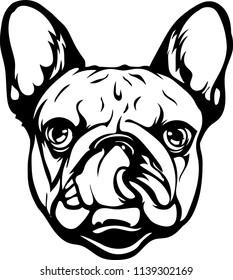French Bulldog lap hot dog breed face head isolated pet animal domestic pet canine puppy purebred pedigree hound portrait peeking paws smiling smile happy art artwork illustration design set