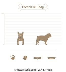 French Bulldog on the dimensional scale. Items for dogs. Face and profile. Vector illustration.