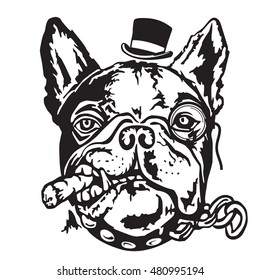 French Bulldog portrait in a hat and with monocle. Vector illustration.