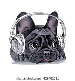 French bulldog Portrait with a headphones. Vector illustration.