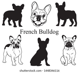 French bulldog set. Collection of pedigree dogs. Black white illustration of a french bulldog dog. Vector drawing of a pet. Tattoo.