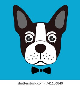 french bulldog vector background