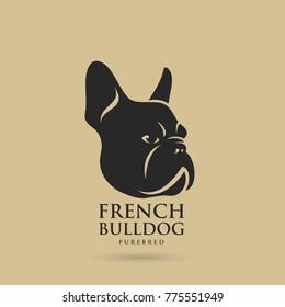 French bulldog - vector illustration