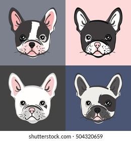 French Bulldog. Vector set of cute bulldog's face. Vector illustration.