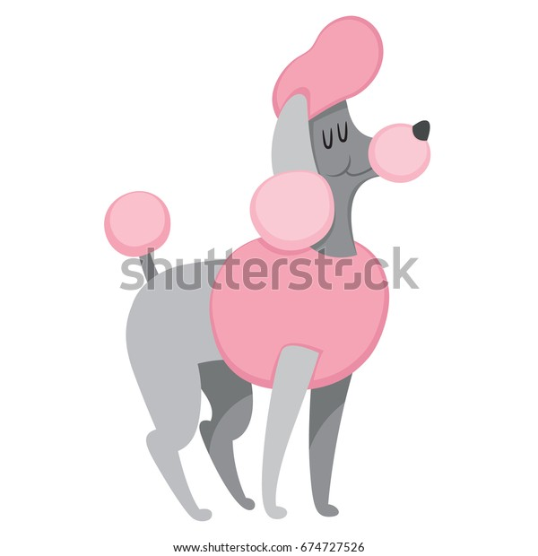 French poodle stand on white background. Dog icon or logo element. Vector illustration. Side view standard poodle design. Cartoon dog character, pet animal.