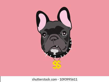 Frenchie The Money. Fierce black french bulldog with Hip Hop Style. He is wearing a gold dollars pendant and black thorn collar.