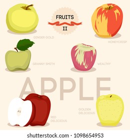 Fresh apples fruits whole and halves flat icons (red delicious, honeycrisp, granny smith, golg delicious and ginger gold) isolated vector illustration