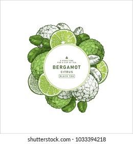 Fresh bergamot round design template. Engraved style illustration. Kaffir lime frame. Vector illustration