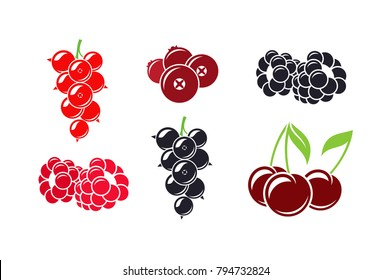 Fresh berries. Isolated raspberry blackcurrant cherry cranberry and blackberry on white background. Vector illustration