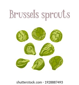 Fresh Brussels sprouts. Healthy nutrition product. Vector hand drawn flat isolated illustration with hand written lettering for your design on white background.