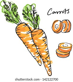Fresh carrots whole sliced & carrot sticks vector illustration