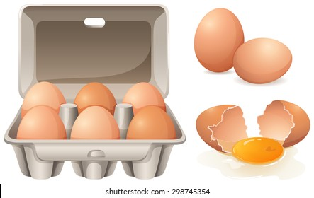 Fresh chicken eggs in box