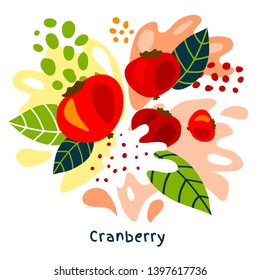 Fresh cranberry berry berries fruits juice splash organic food juicy cranberries splatter on abstract background vector hand drawn illustrations