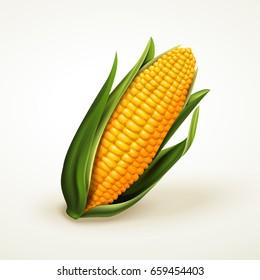 can of corn stock vectors images vector art shutterstock